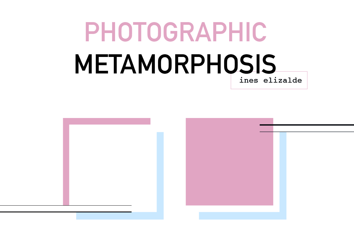 Photographic Metamorphosis